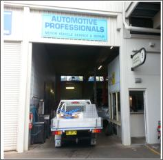 Automotive Professionals Auto repairs and service centre